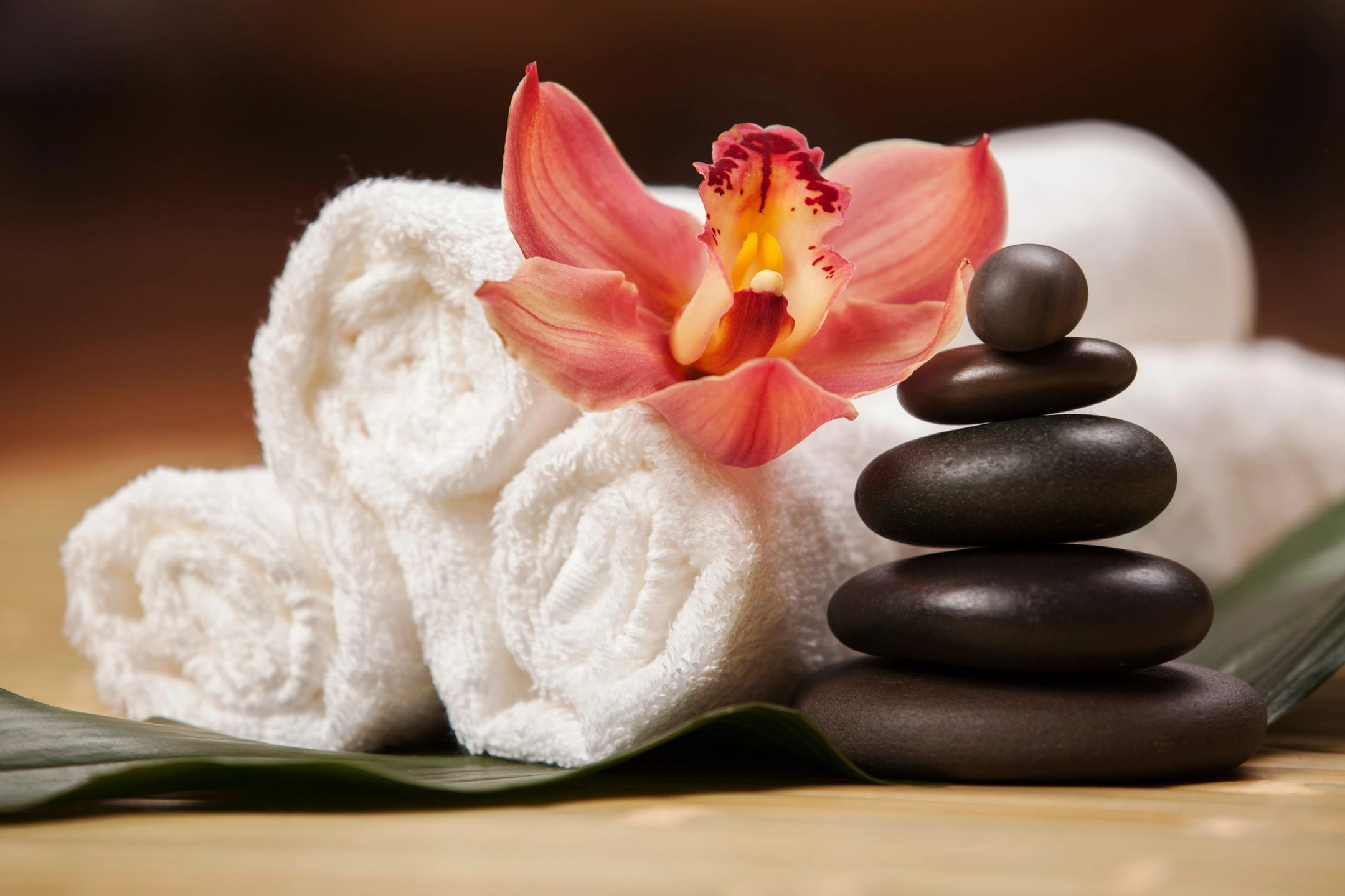 qtq80-pnlpTU Massage Treatments Tampa